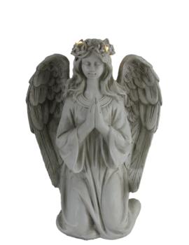 anioł d solar